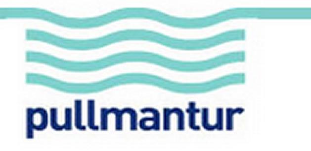 Logo Pullmatur